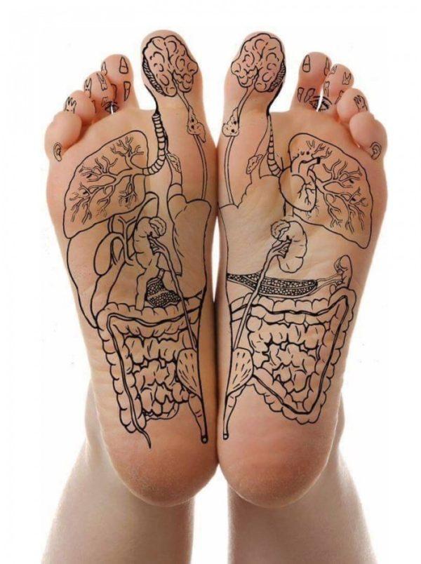 GC-dessin-corps-pieds-reflexologie-plantaire-600x804